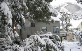 Magpies Nest, Thredbo - 2BD/1BA/5 Guests