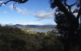 Wedgetail 2, East Jindabyne - View